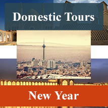 domestic tours